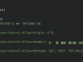 ajax出现Request Method: OPTIONS问题的原因及解决